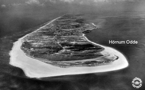 Hoernum_Odde1